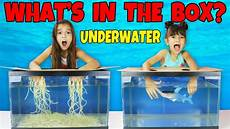 what s in the box challenge underwater and