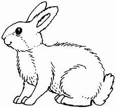 Malvorlagen Kaninchen Kostenlos Kaninchen Malvorlagen Malvorlagen1001 De