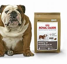 royal canin bulldog royal canin bulldog 24 food 30 lb