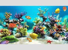 Fish Tank Backgrounds Download   PixelsTalk.Net