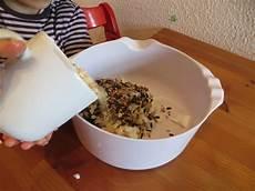 vogelfutter selber machen tannenzapfen tannenzapfen mit vogelfutter mausezahn