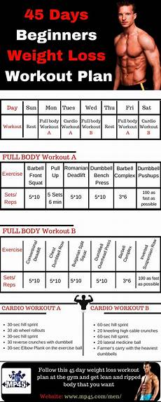 exercises beginners 18791 pin on workouts