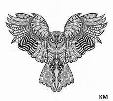 Ausmalbilder Tiere Muster Ausmalbilder Falke Mit Bildern Ausmalbilder