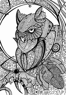 Eule Malvorlage Bunt Owl Coloring Page Owl Coloring Pages Coloring Pages