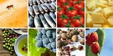 agente di commercio settore alimentare l agroalimentare made in sicily come volano dell economia