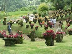 le jardin de jardin de balata