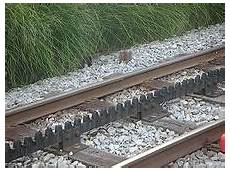 trenino a cremagliera ferrovia a cremagliera