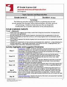 chromosome lesson plans worksheets reviewed by teachers