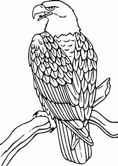 Ausmalbilder Zum Drucken Adler Ausmalbilder Adler 18 Ausmalbilder Tiere