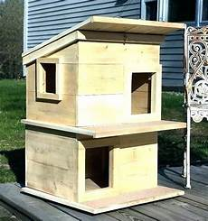 feral cat house plans marvelous feral cat house blueprints google search