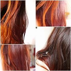 coloration chatain reflet cuivré cheveux color 233 s au henn 233 d 233 gypte reflets blonds