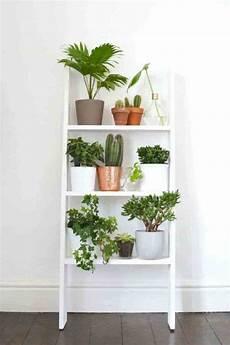 Home Decor Ideas With Plants by 19 Unique Home Decor Ideas With Plants Futurist Architecture