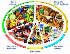 article balanced diet fitness and health