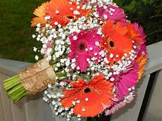 pink and orange gerbera daisies with lots of big love baby s breath bouquet is cuffed with