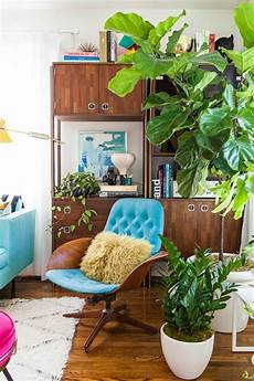 Home Decor Ideas With Plants by 99 Great Ideas To Display Houseplants Indoor Plants