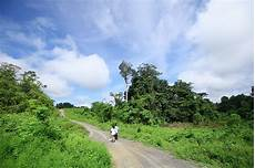 Penjaga Hutan Kalimantan 187 Daenggassing