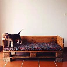 divanetti per cani realizzo su misura cucce divanetti per cani matte