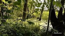 botanischer volkspark in berlin pankow blankenfelde