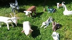 animaux de la ferme les animaux de la ferme racont 233 par claude rich