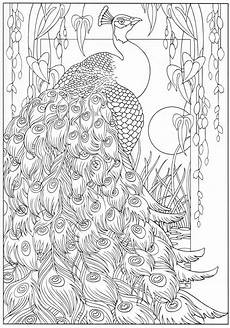 Aquarell Malvorlagen Tiere Bl 252 Hende V 246 Gel Malbucher Mit Bildern Malvorlagen Tiere
