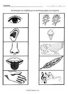 five senses worksheet for kids crafts and worksheets for preschool toddler and kindergarten