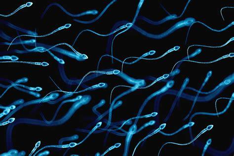 Sperma Ist Ekelhaft