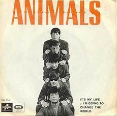 I Ts My Live it s my the animals song