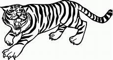 Ausmalbilder Tiere Tiger Tiger Ausmalbilder Zum Ausdrucken Tiger Zeichnung