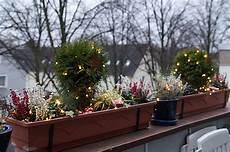 Balkon Herbst Winter - weihnachtliche balkonk 228 sten 2012 green planet