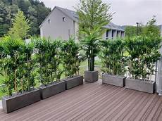 Bambus Wetterfest Premium Kunstpflanzen Dekohaus Ag