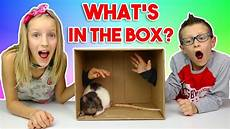 what s in the box appradio youtube what s in the box challenge youtube