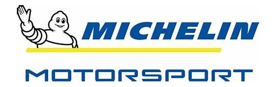 Michelin  Le Mans Endurance The Story Continues FIA