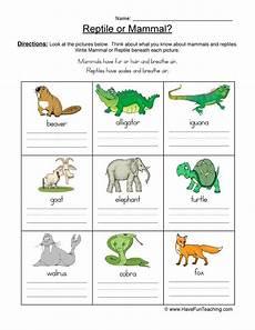 mammal reptile pictures worksheet have fun teaching