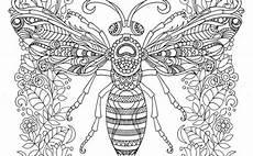 Ausmalbilder Erwachsene Insekten Ausmalbilder Erwachsene Biene 687 Malvorlage Erwachsene