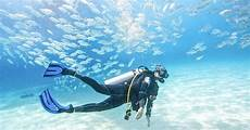 dubai padi basic scuba diving course dubai united arab emirates getyourguide
