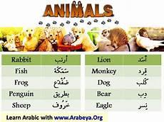 arabic animals worksheets 19777 29 best ideas about arabic words on arabic words football and modern standard arabic