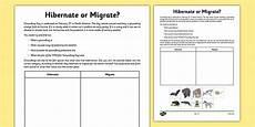 animal migration esl worksheets 14297 hibernate or migrate groundhog day worksheet activity sheet