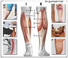 Schmerzen Unter Der Kniescheibe - schmerzen im knie hinten rechts 1 2 schmerzen in der