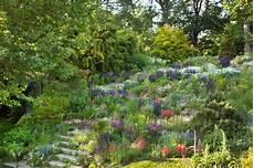steilen hang bepflanzen banks and slopes inspiring garden ideas for all gardeners