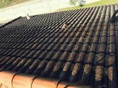 tarif nettoyage toiture tarif nettoyage de toiture castelnau de m 233 doc 33480
