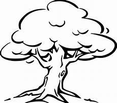 Kostenlose Malvorlagen Baum Baum Mit Wurzeln Ausmalbild Ausmalbilder Ausmalen