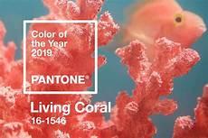 Farbe Des Jahres 2019 - pantone farbe 2019 warum living coral eigentlich dead