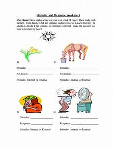 stimulus and response worksheet answers stimulus and response worksheet