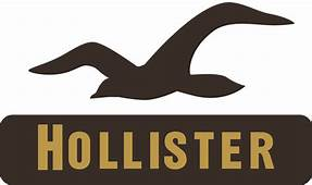Hollister Logo Download In HD Quality