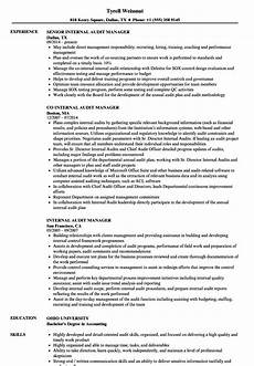 resume manager internal audit internal audit manager cv sle june 2020