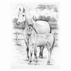 Malvorlagen Malen Nach Zahlen Pferde Pin Gubik Auf Horses Pferde Malen Nach Zahlen