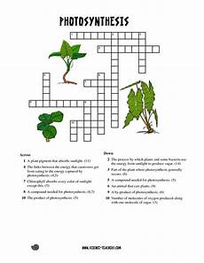 printable photosynthesis crossword bing images