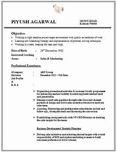 over 10000 cv and resume sles with free download free