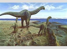 Le dinosaure Camarasaurus   DinoNews