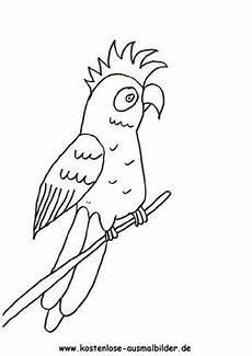 ausmalbild papagei 1 zum ausdrucken